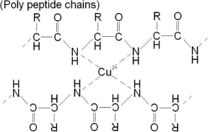 biuret polypeptide