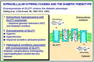 http://www2.warwick.ac.uk/fac/med/research/csri/proteindamage/researchinterest/diabeticcomplications/