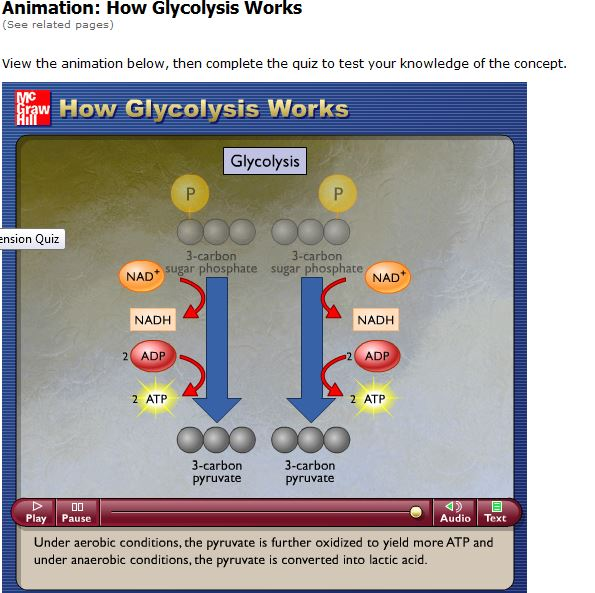 Glycolysis Animation video | Biochemistry is a good thing