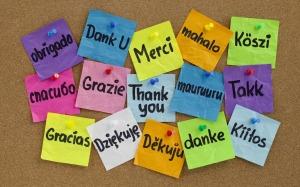 http://kalbsandyules.blogspot.com/2013/02/thank-you.html