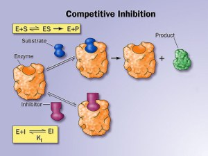 http://chemistrypictures.org/index.php/enzymes/2Competitive_inhibition