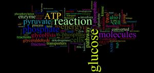 biochem blog wordle 6