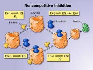 http://www.thuviensinhhoc.com/album/category/17-enzim.html